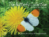 The Butterfly Collection